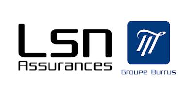 Logo LSN